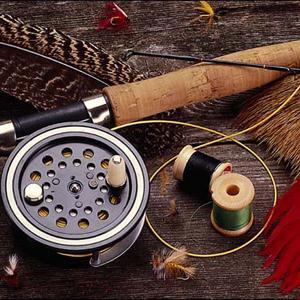 Охотничьи и рыболовные магазины Бердюжья